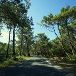 Frankreich Roadtrip