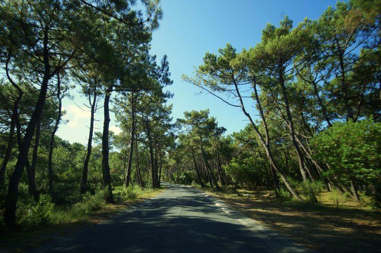 Frankreich Camping-Trip
