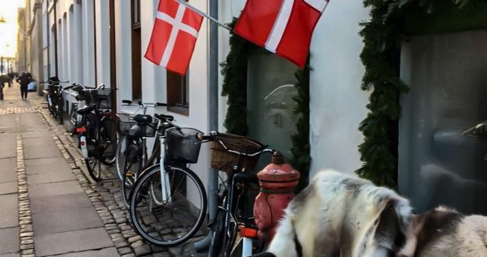 Leben in Dänemark - eine Auswandergeschichte Leben in Dänemark