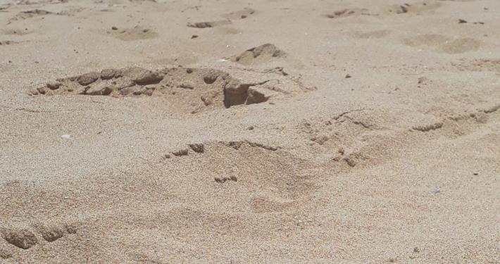 am Strand von Lagos