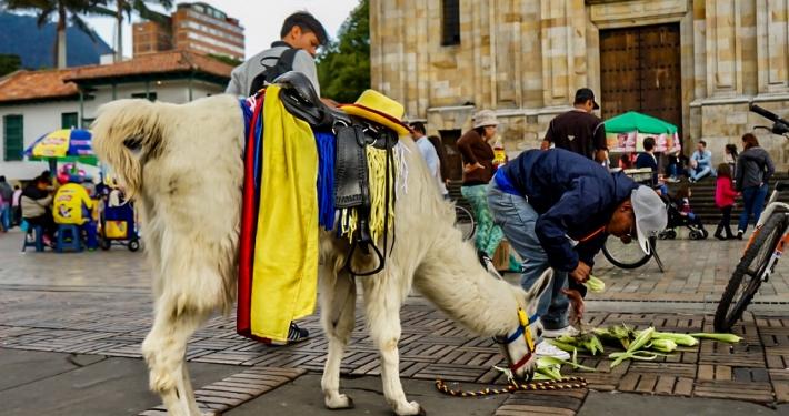 Plaza de Bolivár