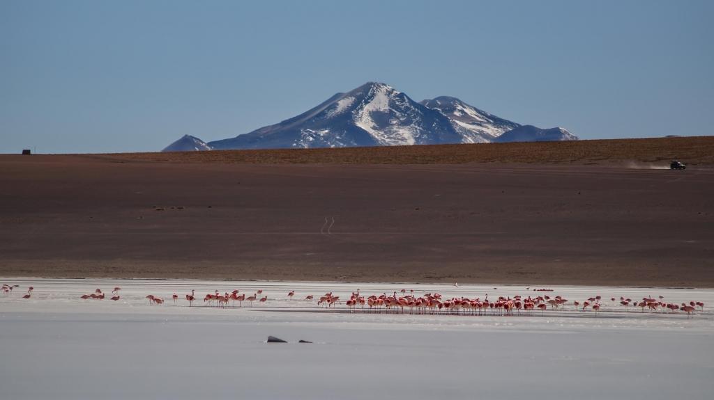 Uyuni-Tour Teil 2: bunte Lagunen im Südwesten von Bolivien