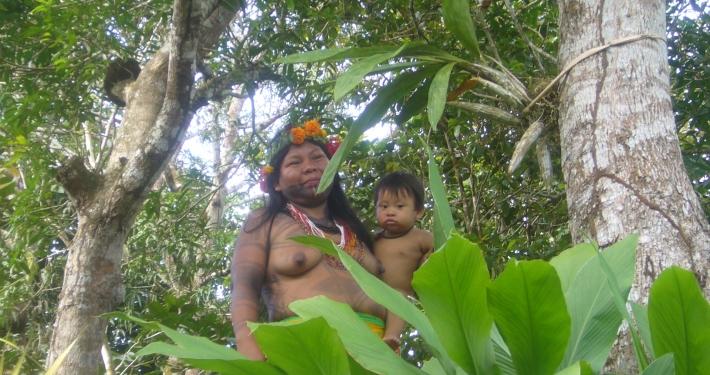 Darien Dschungel