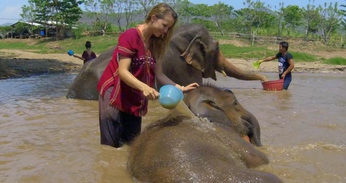 Elefantencamp Thailand