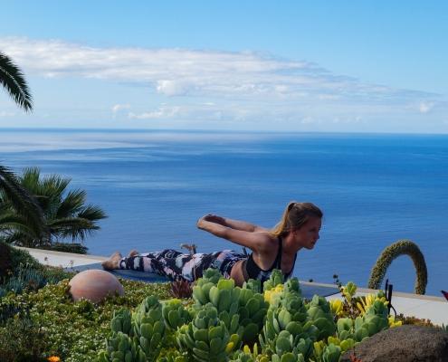 Heuschrecke im Yoga Urlaub