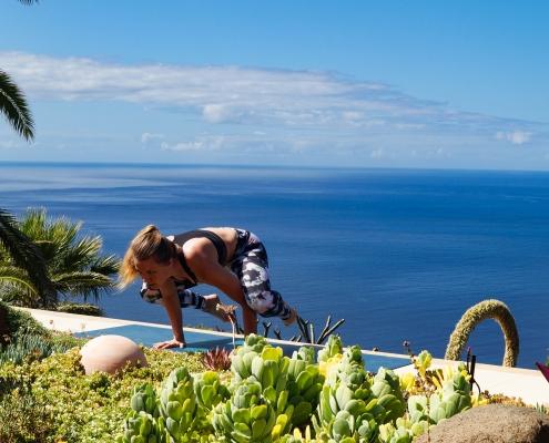 Krähe im Yoga Urlaub