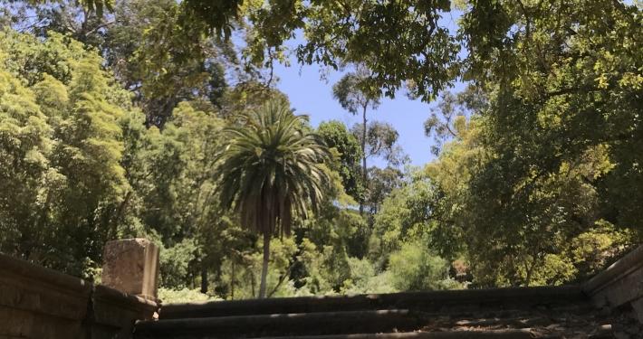 Der Park Perdicaris Tanger