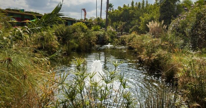 ANIMA Garden Marrakesch