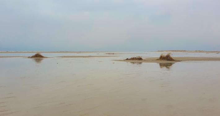 Amrum: Kurzurlaub auf 20 Quadratkilometern Insel in der Nordsee Amrum