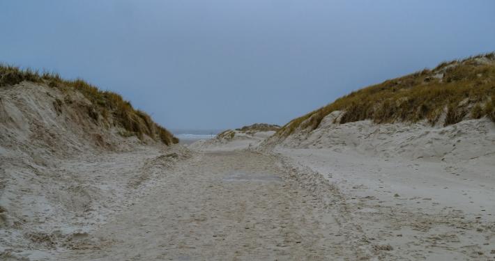 Strand in Nebel Amrum