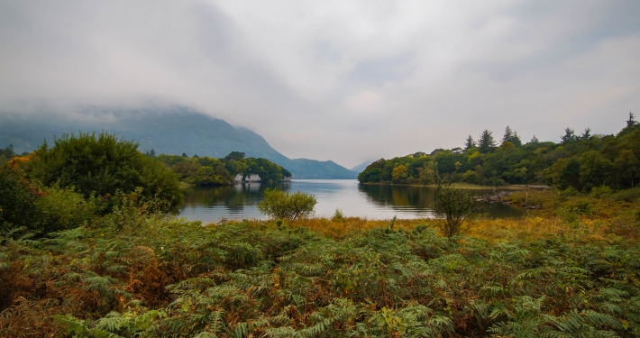 Am Ufer des Muckross Lake im Killarney National Park