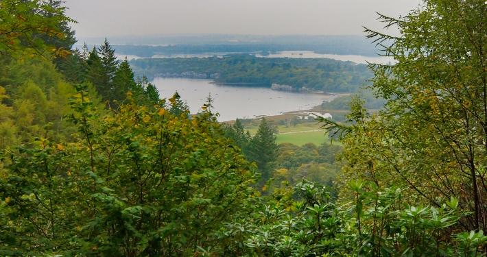 Ausblick vom Torc Waterfall auf den Killarney National Park