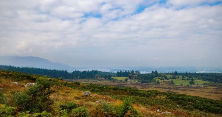Ausblick auf den Killarney National Park