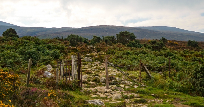 Wanderweg zum Devil's Punch Bowl im Killarney National Park
