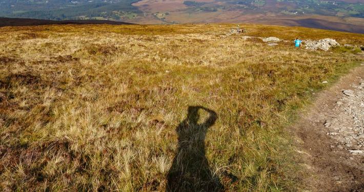 Blick auf den Killarney National Park