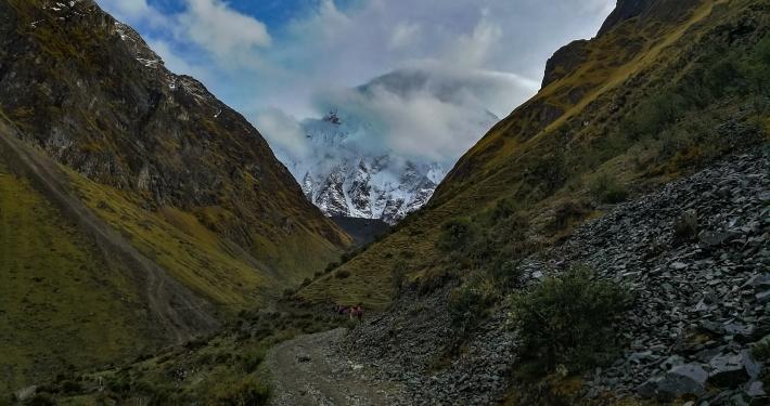 Blick auf den Salkantay Berg