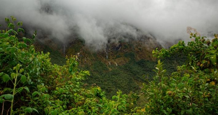Wasserfälle im High Jungle