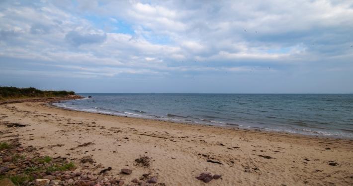 Camp Beach Dingle