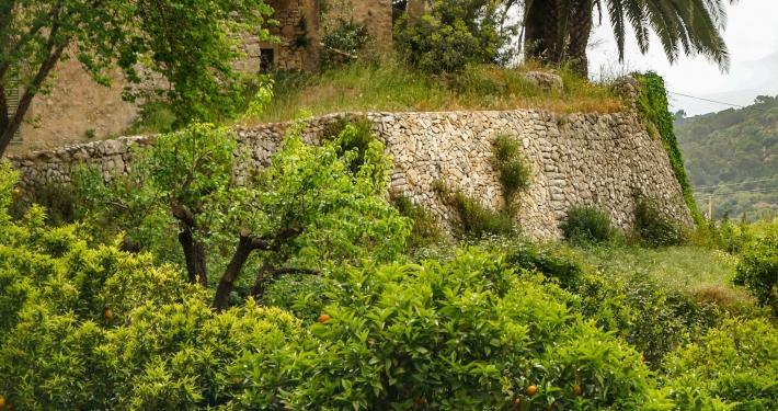 Puig de Randa Mallorca