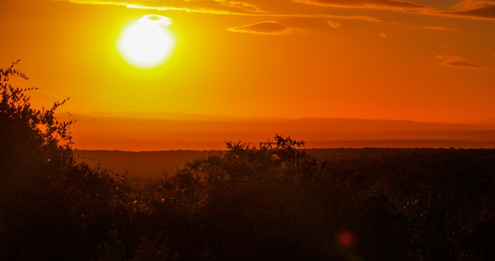 Sonnenuntergang im Addo Elephant National Park Südafrika