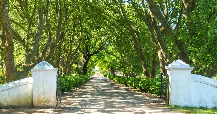Winelands Südafrika