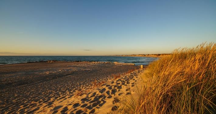 Strand in Vorupør