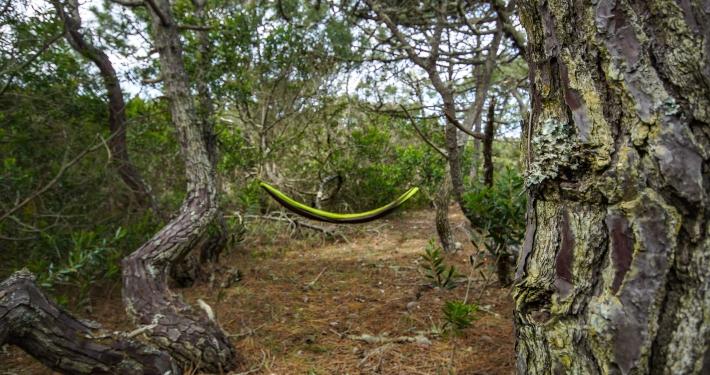 Campingplatz Figuera da Foz Portugal Rundreise